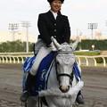 写真: 川崎競馬の誘導馬05月開催 こいのぼり青Ver-120514-08-large