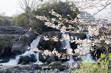 鮎壷の滝 2012.4.7-4