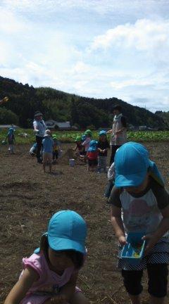 万江保育園が田んぼで泥遊び中。