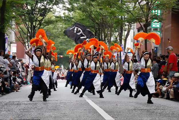 パワフル_05 - 良い世さ来い2010 新横黒船祭