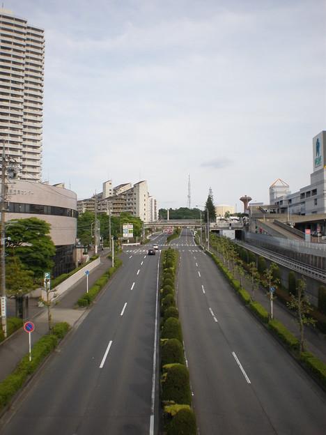 人気のない道路(愛知県道195号・小牧市東部市民センター付近)