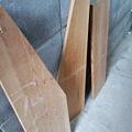 Photos: さあ今日は木工でもし始める...