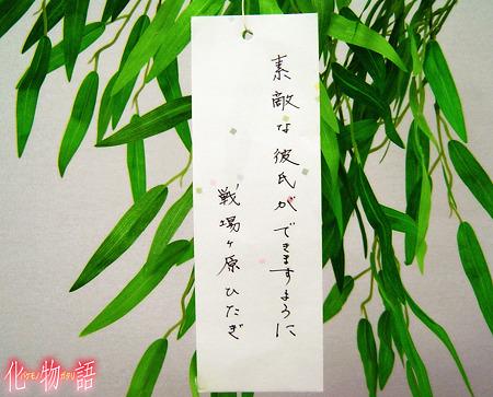 hitagi_wish