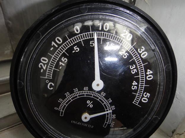 2011年2月16日 7度の気温