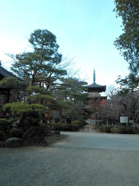 世田谷線:宮の坂駅界隈_豪徳寺-06三重塔a