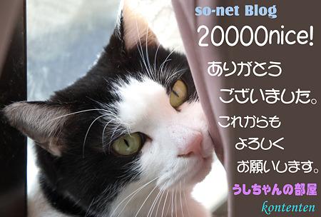 20000nice!@so-net Blog