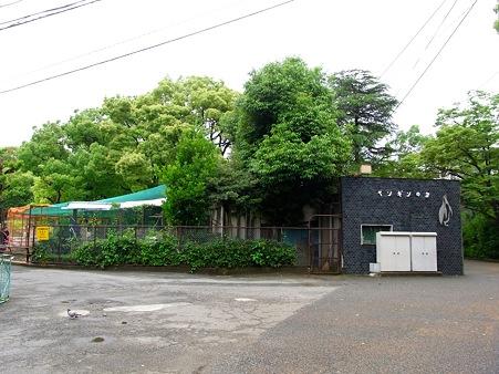 20110522 天王寺動物園03