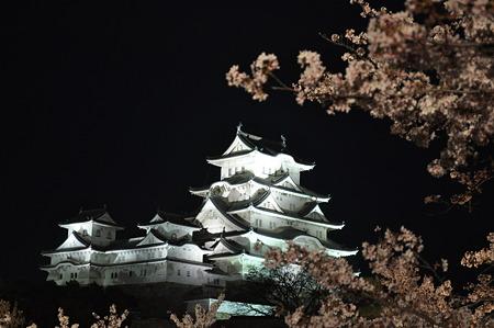 「花あかり」姫路城夜桜会