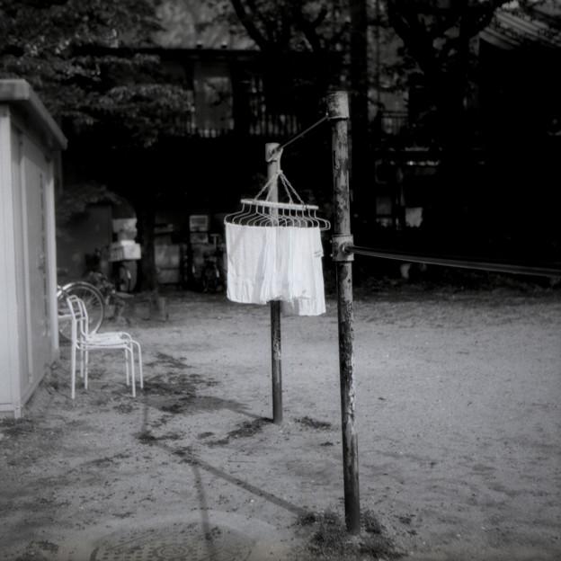 路地裏の公園