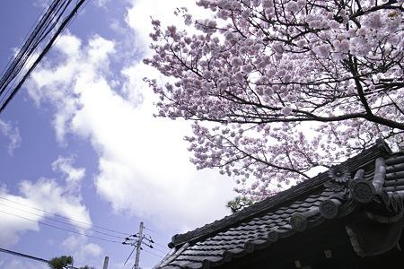 2010-04-17の空