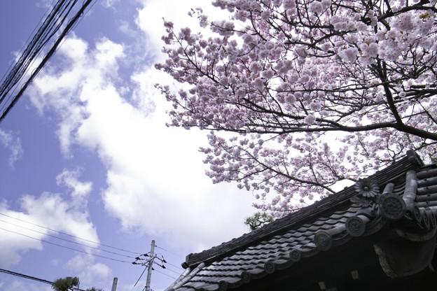 Photos: 2010-04-17の空