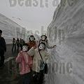 Photos: 雪の大谷4