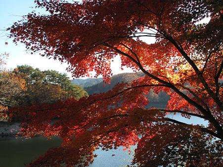 三河湖とモミジ