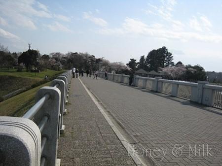 狭山湖堤防2 IMG_8743