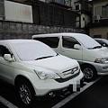 写真: 20110304_yuki