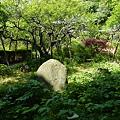 写真: 瑞泉寺庭園