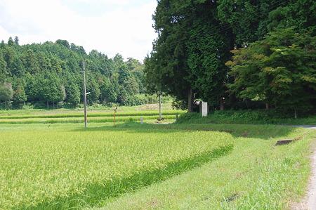 2010年08月15日奈良旧都祁村