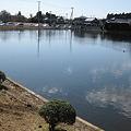 写真: 北山池