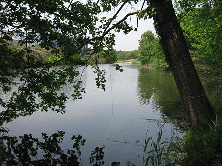 新池 (2)