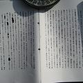 写真: 平成5年精神鑑定書_2
