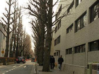 東京工業大学 大岡山東地区