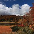 彩る秋景色・大沼
