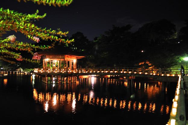 奈良 燈火会