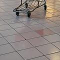 Photos: A Shopping Cart