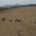 Photos: 砂丘を下りて行く_01