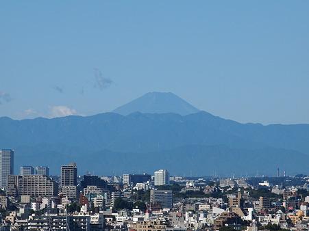 やっぱり心に響くのは富士の山