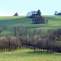 グリーンが広がる景観