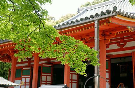 観心寺の本殿