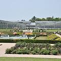 写真: 神代植物園