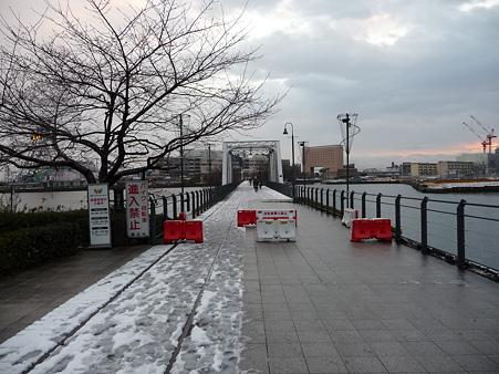 110215-汽車道(早朝) (1)