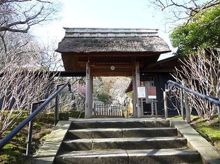 110225-東慶寺  (4)