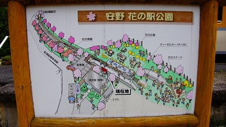 温井ダムドライブ (52)安野花の駅公園