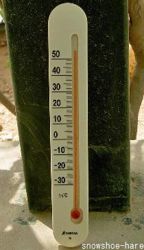 2010年6月20日の気温