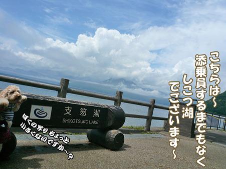 くーかいと支笏湖 1