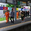 Photos: 2012.06.06 鎌倉 江ノ電鎌倉駅 TVロケ