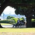 Photos: 2010.10.06 山下公園 ベンチ
