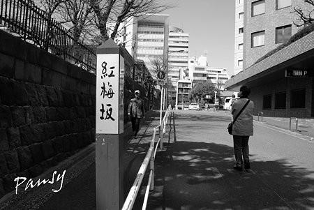 御茶ノ水・神田さんぽ~41