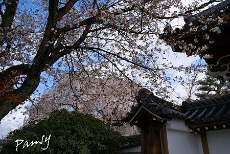 本満寺にて・・1