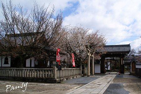 本満寺にて・・2