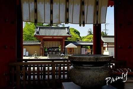 奈良 薬師寺にて・・8