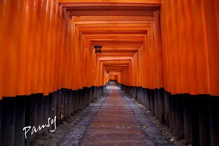 朱の回廊・・京都 伏見稲荷大社・・13