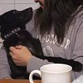 Photos: セナ君も抱っこされて