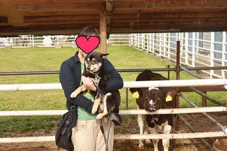 牛さんと一緒に♪