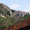 写真: あゆのつり橋と屏風岩と山桜