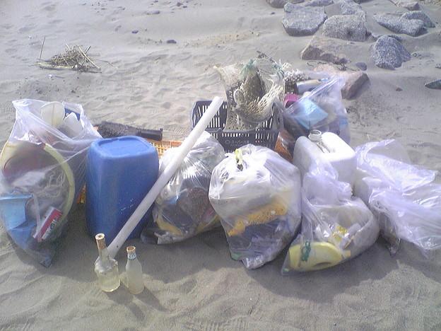写真: 小針浜ビーチクリーン (7)