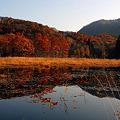 Photos: 福島県・観音沼